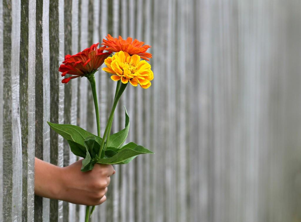 Dárková krabice na kytky